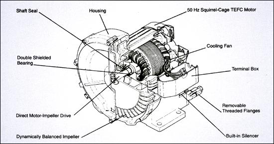Rotary Screw Blower : Air curtain blower rotary lobe pump vacuum